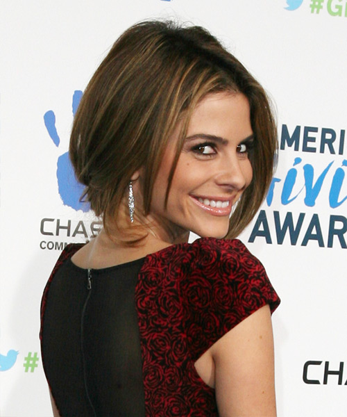 Maria Menounos Updo Long Straight Casual Wedding Updo Hairstyle   - Medium Brunette - Side View