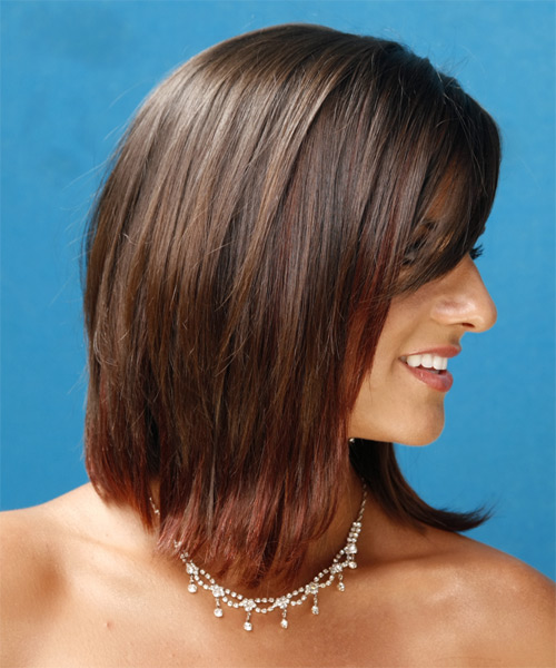 Long Straight Formal   Hairstyle   - Medium Brunette - Side View
