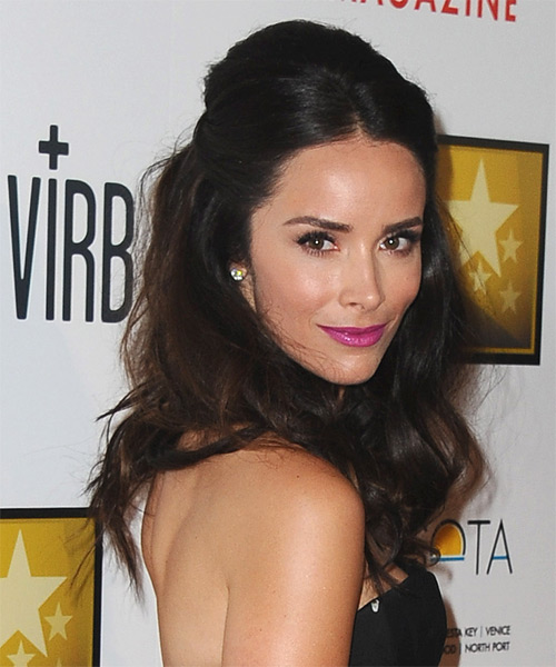 Abigail Spencer  Long Straight   Dark Mocha Brunette  Half Up Hairstyle   - Side View