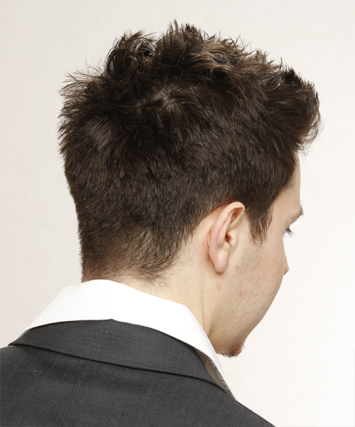 Short Straight   Dark Brunette   Hairstyle   - Side View