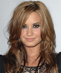 Demi Lovato Long Straight Casual    Hairstyle   - Light Caramel Brunette Hair Color