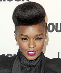 Janelle Monae  Long Straight Formal   Updo Hairstyle   - Black  Hair Color