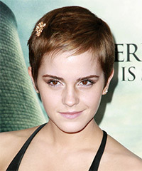 Emma Watson Short Straight Casual  Pixie  Hairstyle   - Honey Hair Color