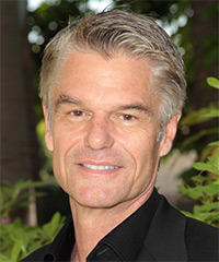 Harry Hamlin Short Straight Formal    Hairstyle   - Light Grey Hair Color with Dark Grey Highlights