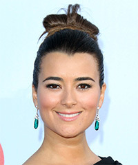 Cote de Pablo  Long Straight Formal   Updo Hairstyle   - Dark Brunette Hair Color