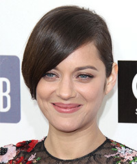 Marion Cotillard  Long Straight Formal   Updo Hairstyle   -  Chocolate Brunette Hair Color