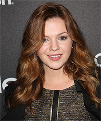 Amber Tamblyn Long Wavy Formal    Hairstyle   -  Auburn Brunette Hair Color