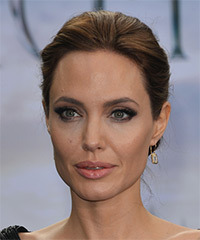 Angelina Jolie  Long Straight Formal   Updo Hairstyle   -  Brunette Hair Color