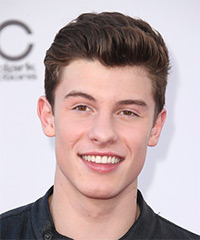 Shawn Mendes Short Straight Formal    Hairstyle   -  Brunette Hair Color